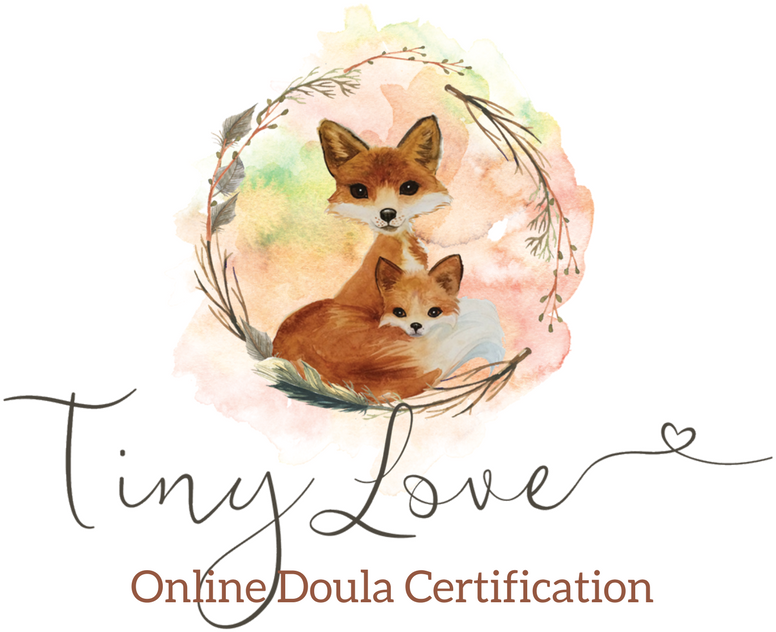 Tiny Love Doula Training | Online Birth and Postpartum Doula Certification Programs